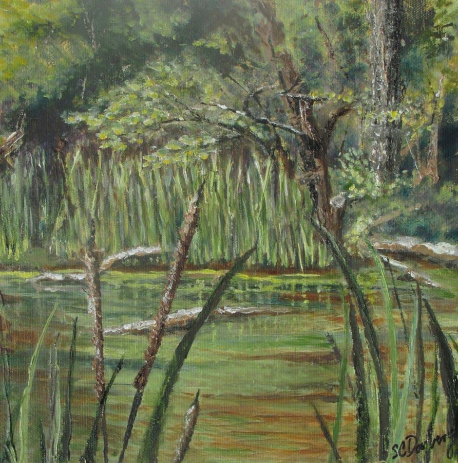 Buckingham Pond 6